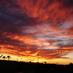 アメリカ買い付け紀行『アリゾナの夕焼け』の画像