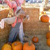 ハロウィンかぼちゃ Kioの秋便り第二号の画像